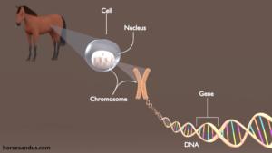 Сколько стоит ДНК анализ в Московской области?