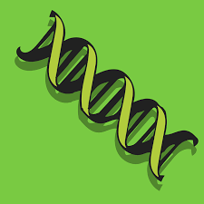 Отказ от ДНК