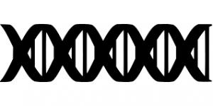 Независимая генетическая экспертиза