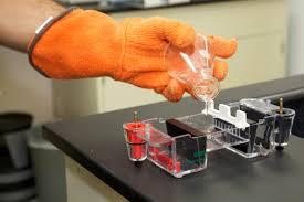 Процедура ДНК