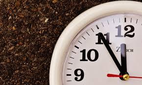 Сколько делается анализ ДНК по времени?