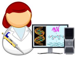 Сколько делают ДНК?