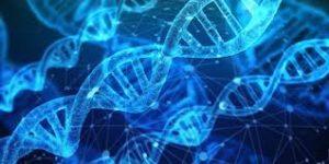 Судебно-медицинская экспертиза генетическая