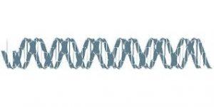 Центр анализа ДНК