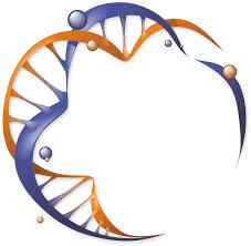 Центр генетической экспертизы ДНК