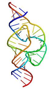 Полный генетический тест