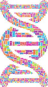 Порядок проведения экспертизы ДНК