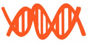 Сдать генетический анализ в Москве