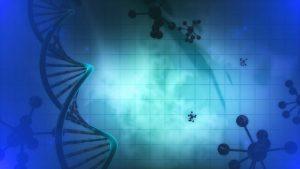 Судебно-медицинская молекулярно-генетическая экспертиза